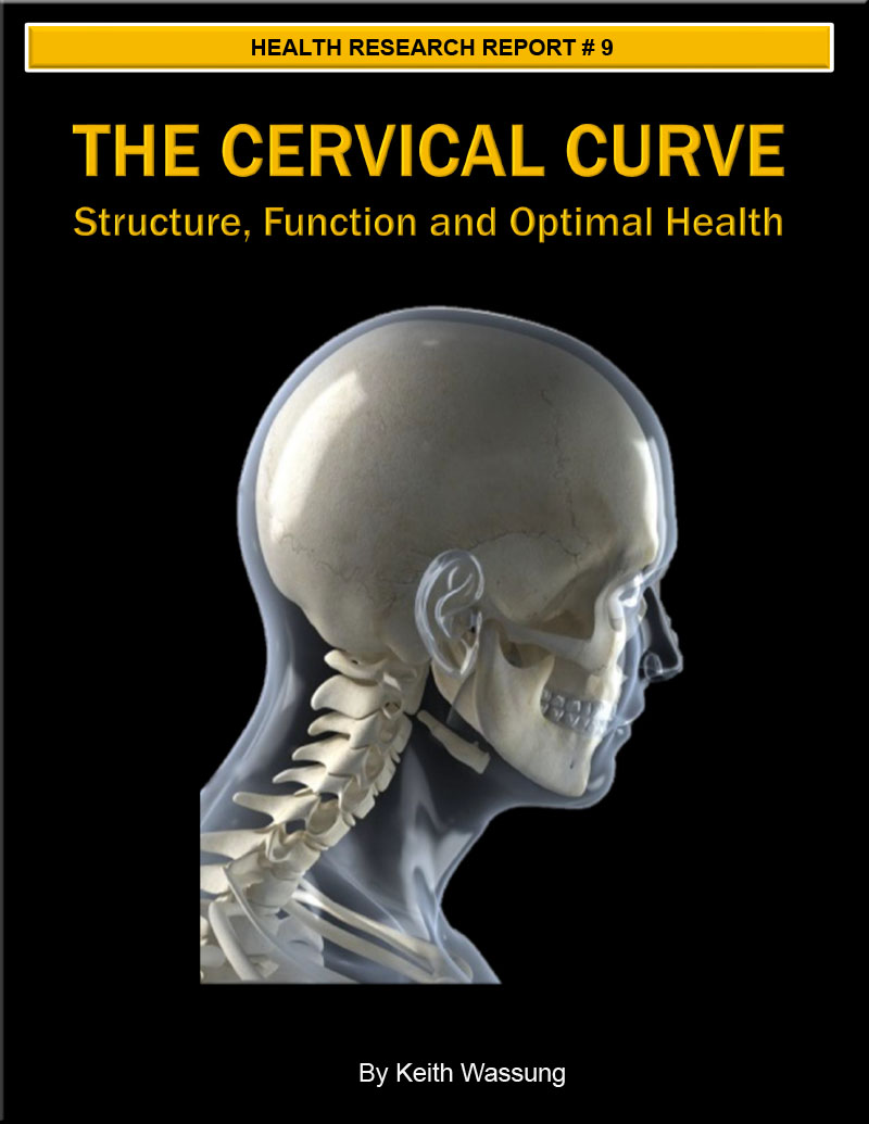 cervical curve, neck pain, chiropractic